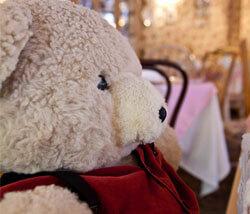 brambles-english-tea-room-naples-teddy